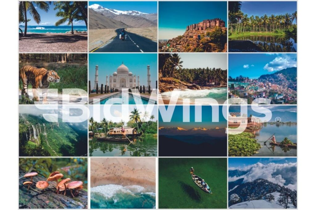 Bidwings.Com, World's First Social Travel Platform, Launches in India; Bid Your Price to Book Hotels